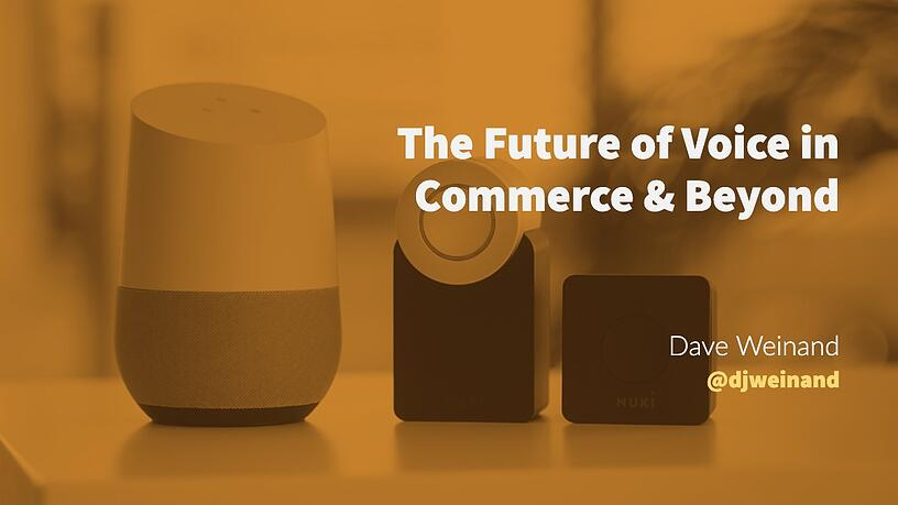 The Future of Voice in Commerce & Beyond, Incisic, Blog, Q&A, Blog